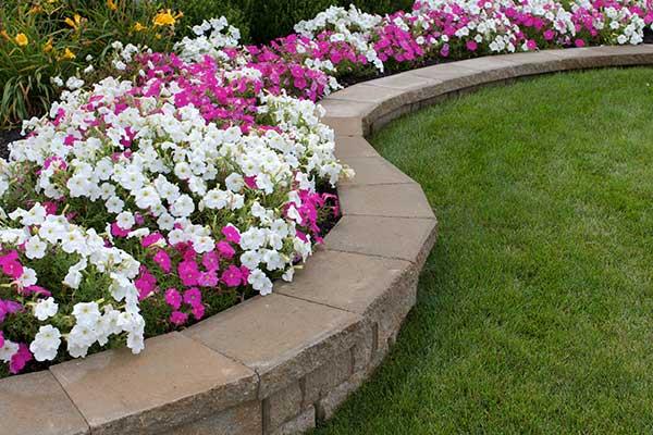 Floral Landscape Programs
